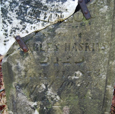 Insription: ELENOR, Wife of Charles Haskins, died Jan. 11, 1873 aged 40 yrs