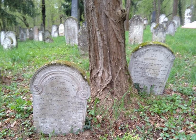 two tombstones in Kobersdorf Jewish Cemetery.jpg